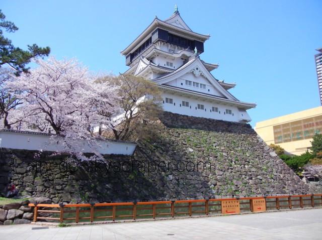 小倉城 お花見