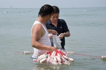 Fischer Phu Quoc