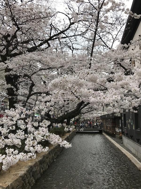 centro de kioto