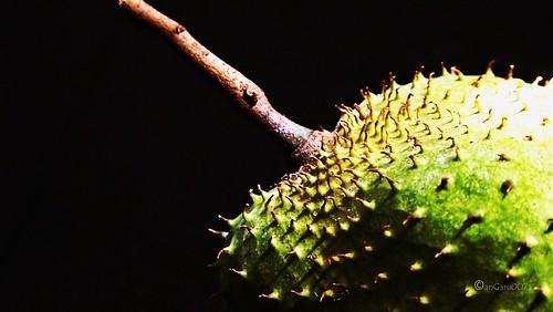 fruit for_NATURAL CANCER TREATMENT