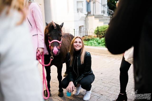 Whiskey & Unicorns