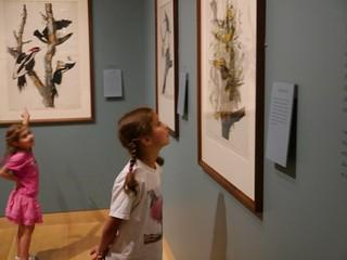 Museum of Fine Arts: Maritime art, Audubon, musical instruments