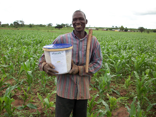 Farmer displays aflasafe box