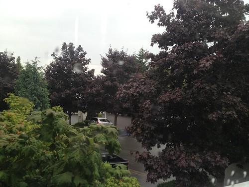 Raindrops on my window by DRheins