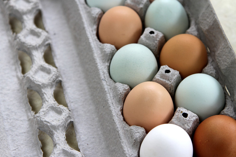 barberry hill farm eggs