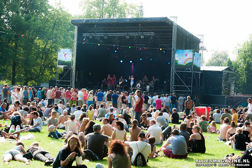 Roots in the Park festival 2013