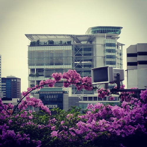 National Library #singapore by @MySoDotCom
