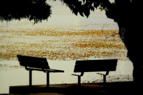 lonely benches just for two by ontheraks (slow and getting slower waaa)