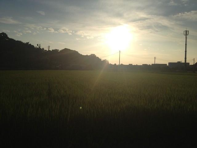 写真 2013-07-21 18 01 12.jpg