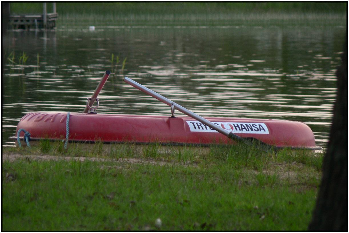 Kanada Gäss-25