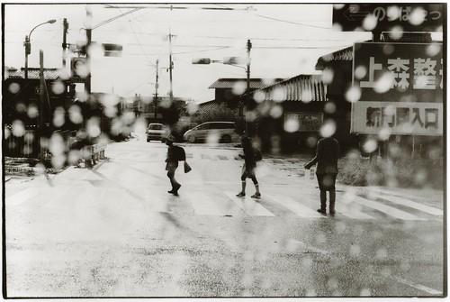 morning after rain by junku-newcleus