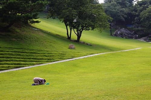 施肥後,在草地上獻上感謝禱告的長老