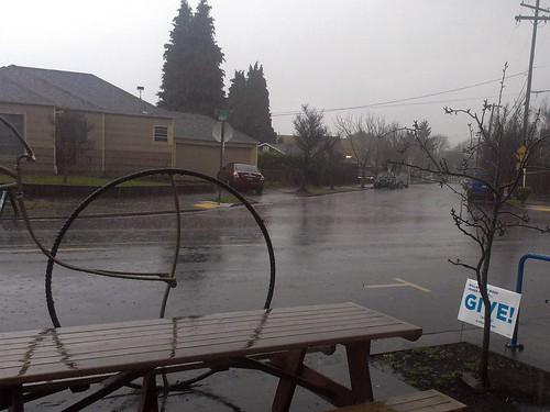No polar vortex in the Northwest, just rain, and lots of it. by urbanadventureleaguepdx
