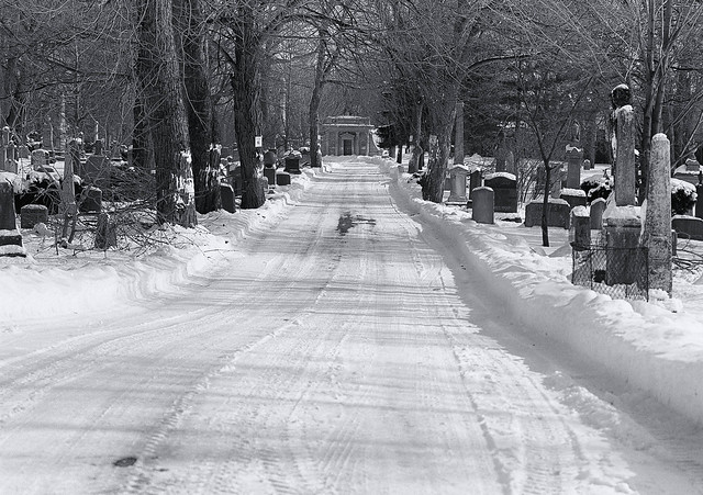 Road to the Mausoleum