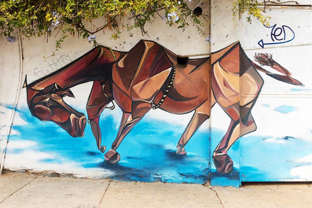Street Art Valparaiso 19