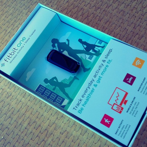 Finding The One: FitBit One