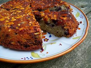 blueberry sourdough coffee cake