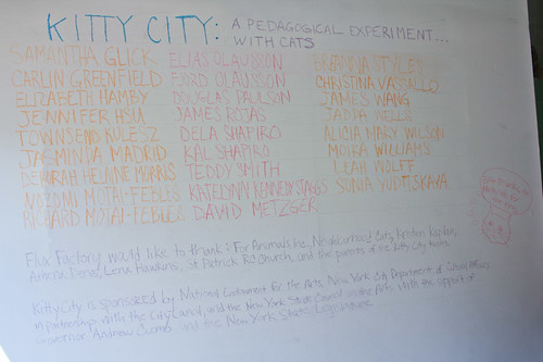 The Kitty City team