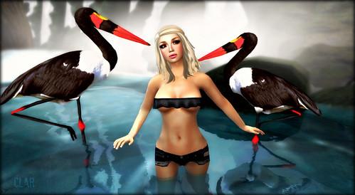 LH Gisele Black Avery Dark