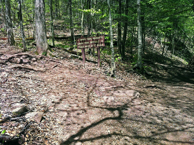 The trail splits into the Upper and Lower Trails - both paths rejoin in 0.4 miles.