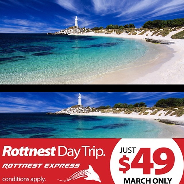 Worked out a good deal with Rottnest express for use of my images
