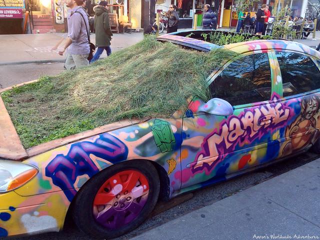 Graffiti Plant Car