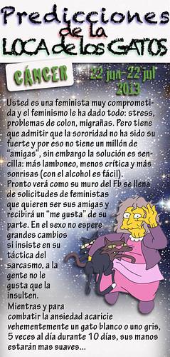 CancerLocaGatos2013