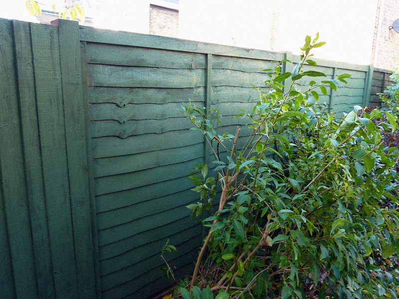 garden-fence-after