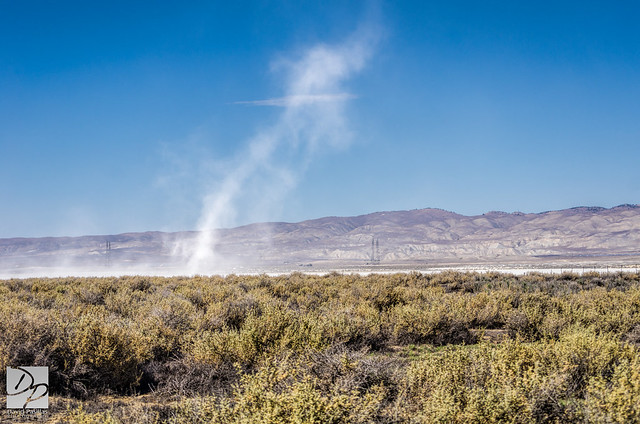 White Dust Devil