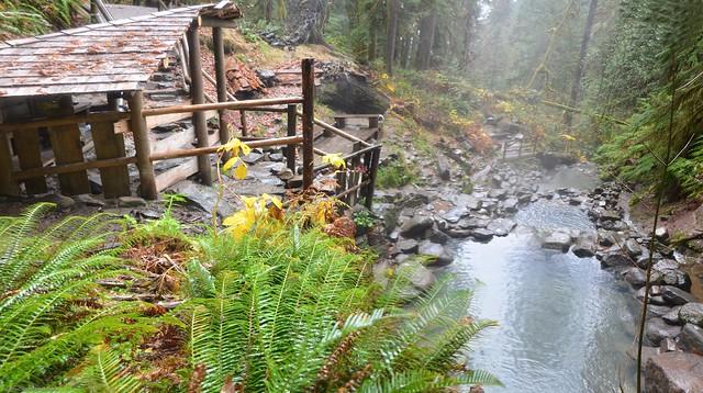 Cougar Hot Springs - Top View