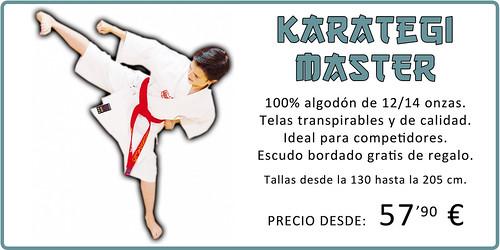 Karategi Master