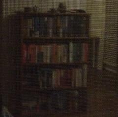 Bookshelf Reflection
