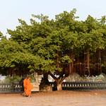 07 Kampong Cham 12
