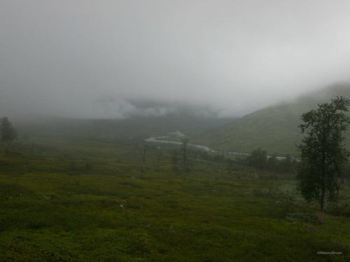 Misty morning in Bjøllådalen