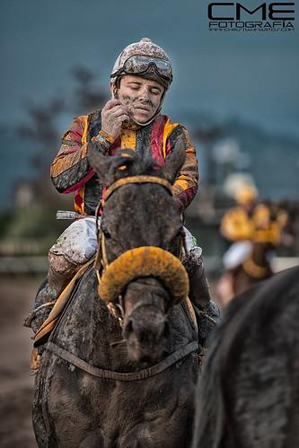 caballo-regalon by Christyan Martos