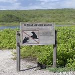 Viajefilos en San Cristobal, Galapagos 041