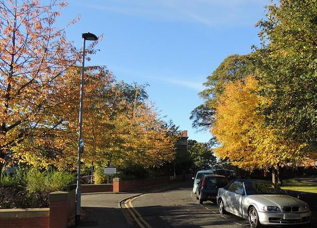 Wakefield Autumn 19