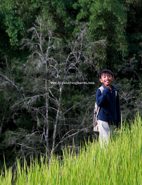 Kid in Rice Terraces