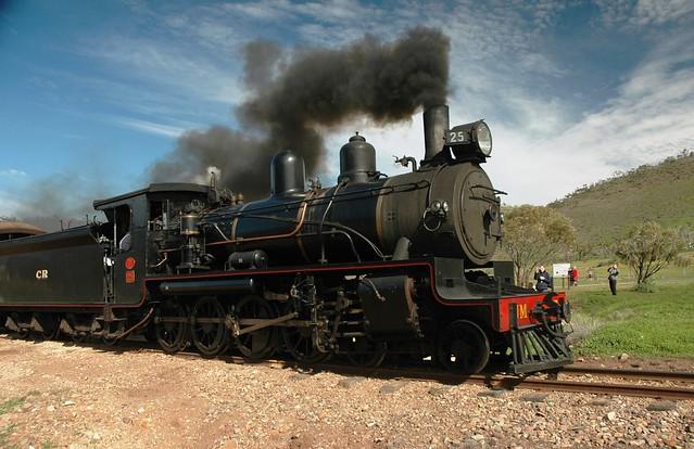 Pichi Richi Railway engine 25