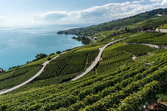 Walkways, Lavaux, Switzerland