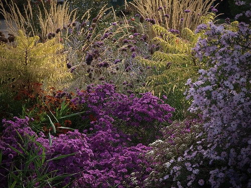 Makin'Gardens @2013 by Paolo Tasini
