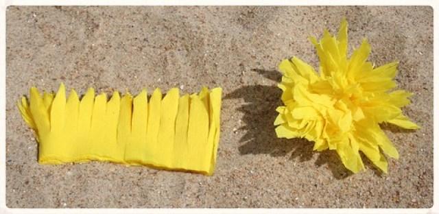Soorten strandbloemen (6)