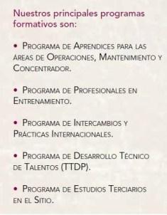 Principales programas de formación y educación