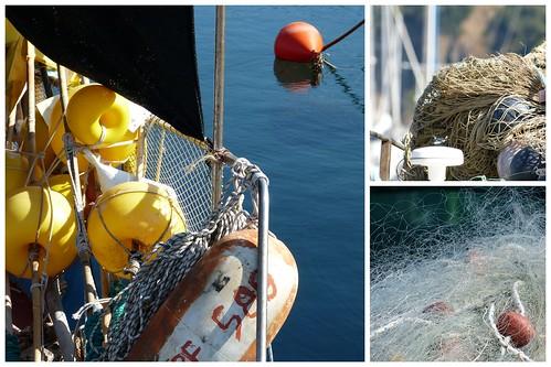 Elba September13 2013-09-1011