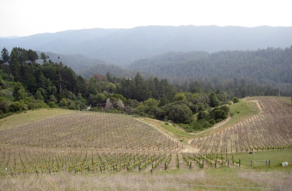 050208 Rhys Vineyards Tour and Tasting 045