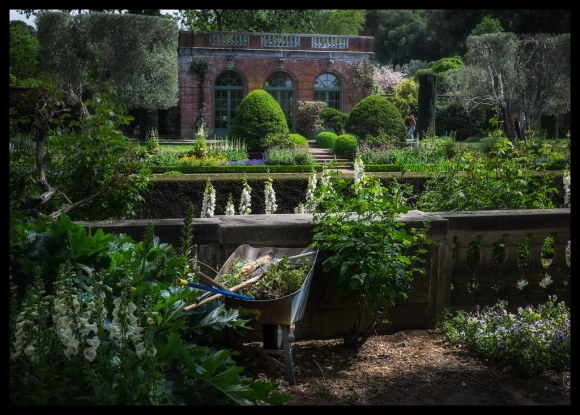 Wheelbarrow - Filoli - 2014