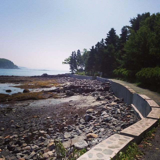 Ocean Walk in Bar Harbor. #barharbor #maine #latergram