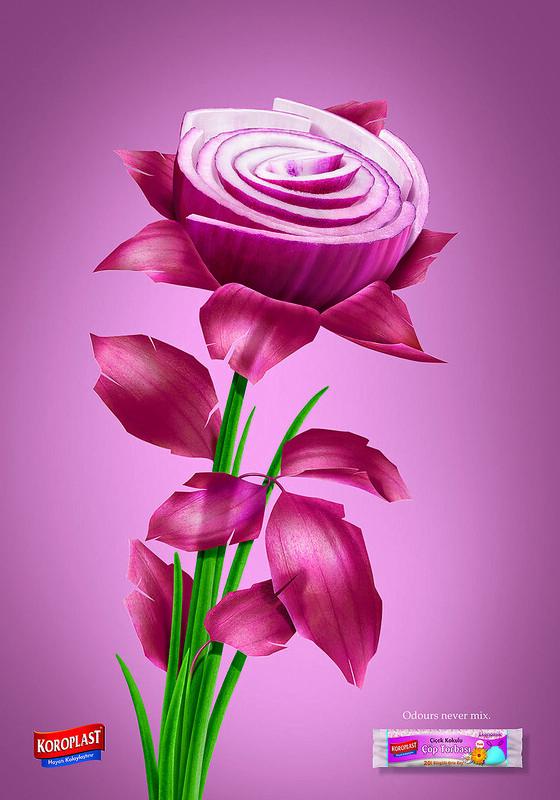 Koroplast - Onion Flower