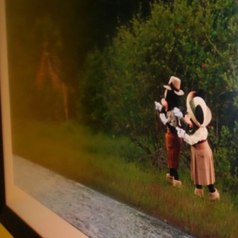 Adventures Outpostにはミッキーとミニーの旅行写真が。ナイスPhotoshop。