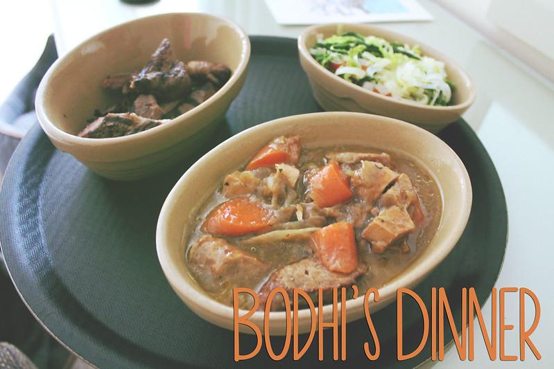 Bodhi's Dinner